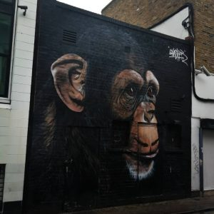 Street art e graffiti a Londra camden scimpanzè