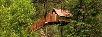 casa sull'albero per bambini Tree village