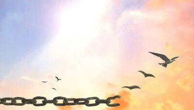 viaggi organizzati o fai da te libertà