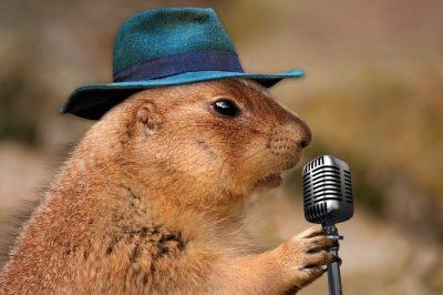 Giochi da fare a voce cantare