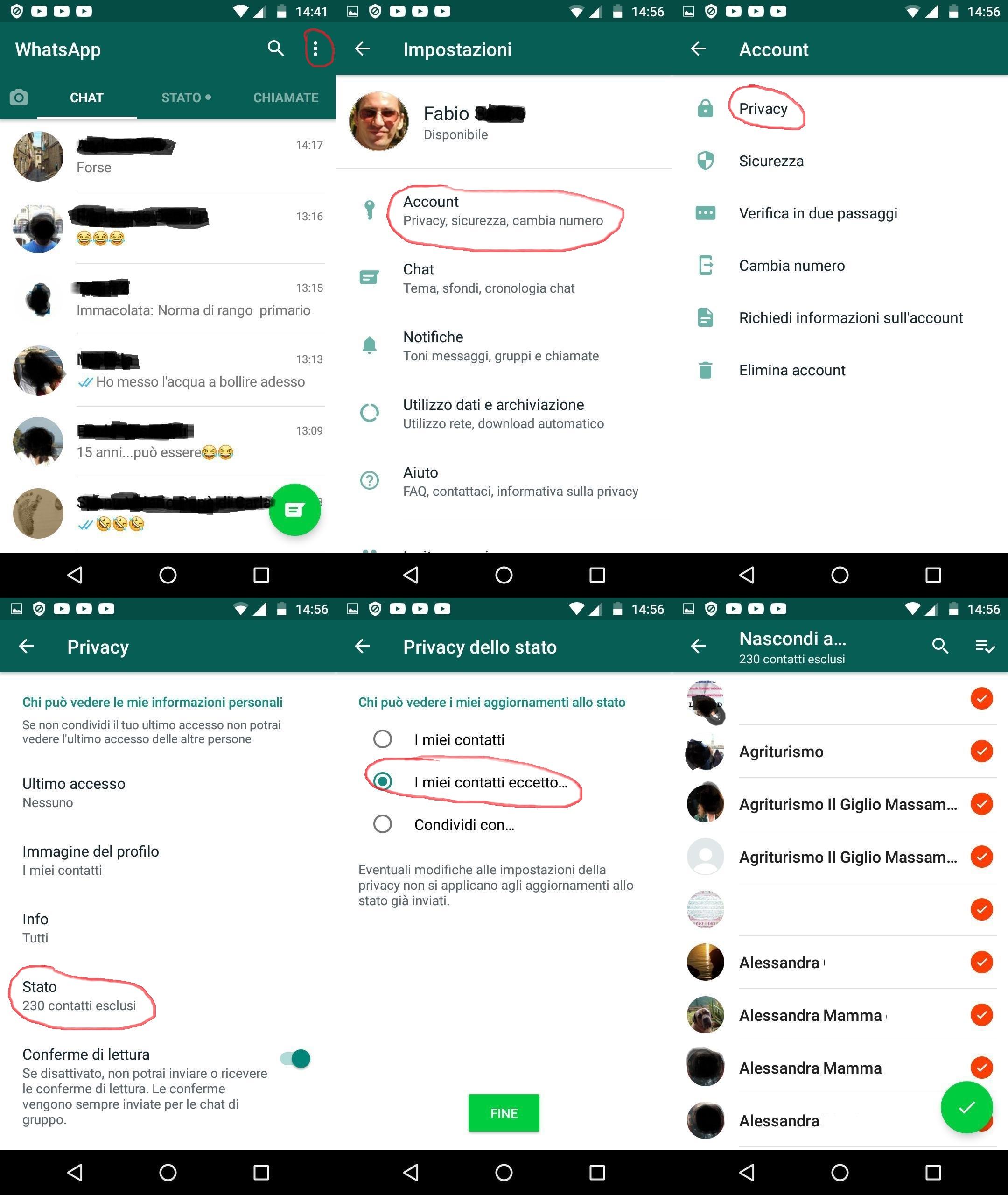WhatsApp come nascondere lo Stato